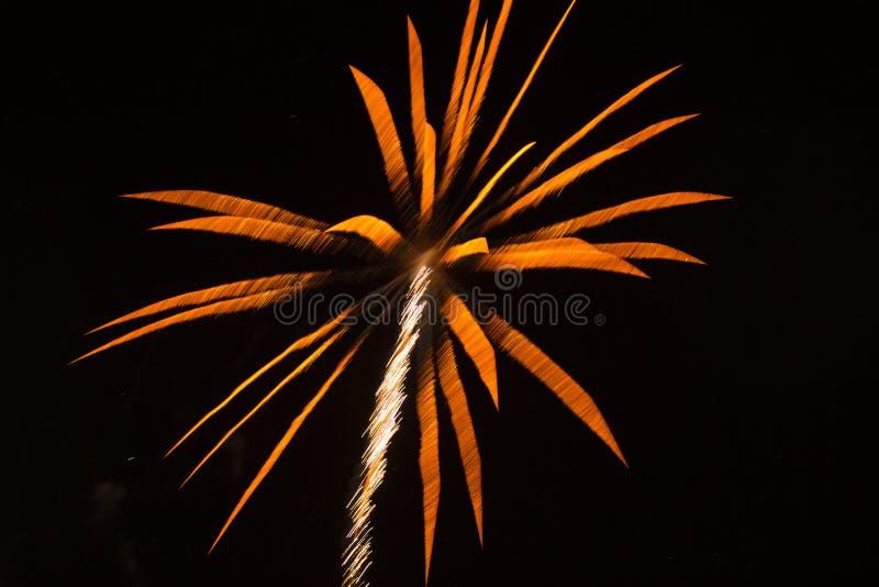 Abstracte Achtergrond: Vuurwerk zoals Oranje Palm RT royalty-vrije stock foto's