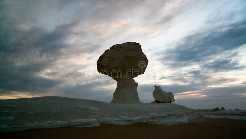 Abstracte akakip van aardbeeldhouwwerken onder de boom Witte woestijn, de Sahara, Egypte stock afbeelding