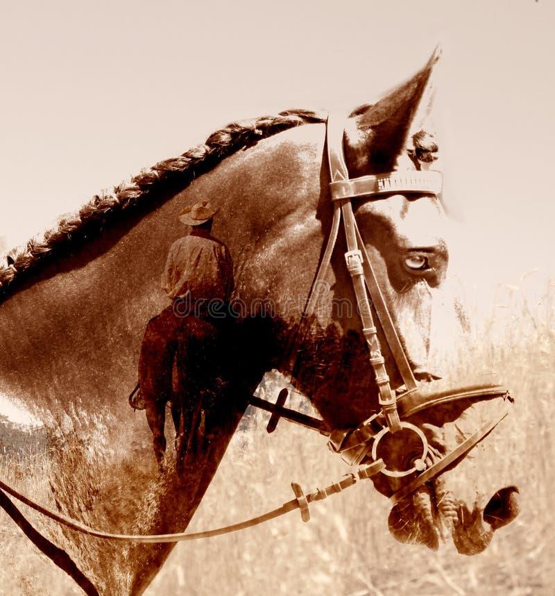 Abstracte cowboypaard en ruiter. stock fotografie