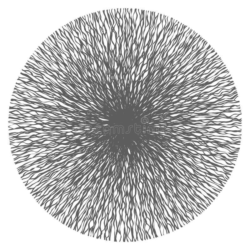 Abstracte Curvy-Lijnen van Centrumvector vector illustratie