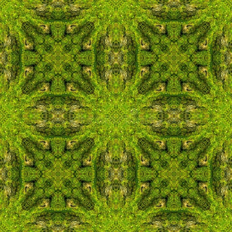 Abstracte decoratieve groene mosachtergrond Naadloos patroon royalty-vrije stock fotografie