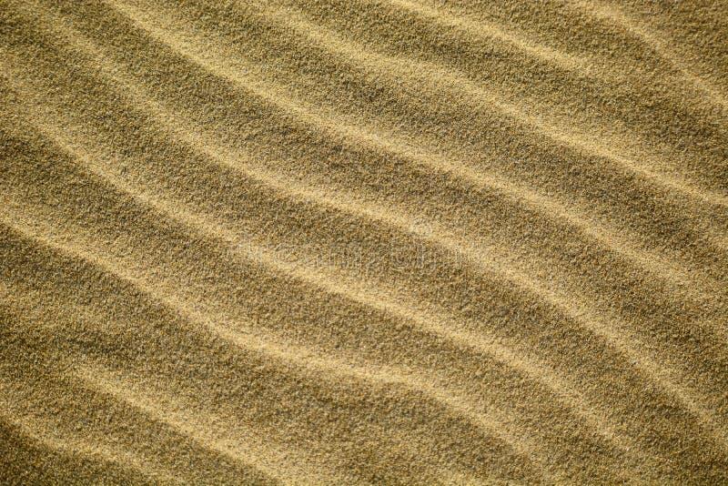 Abstracte die patronen door golven op gouden zand van de stranden van Nieuw Zeeland worden gemaakt; vroege ochtend - mooi zonlich royalty-vrije stock foto's