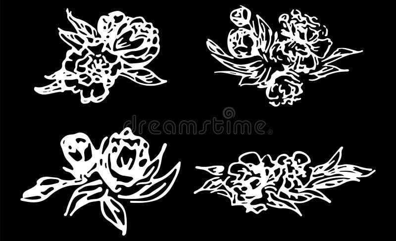 Abstracte die pioenen en rozen op zwarte achtergrond worden geïsoleerd Hand getrokken bloemeninzameling 4 bloemen grafische eleme stock illustratie