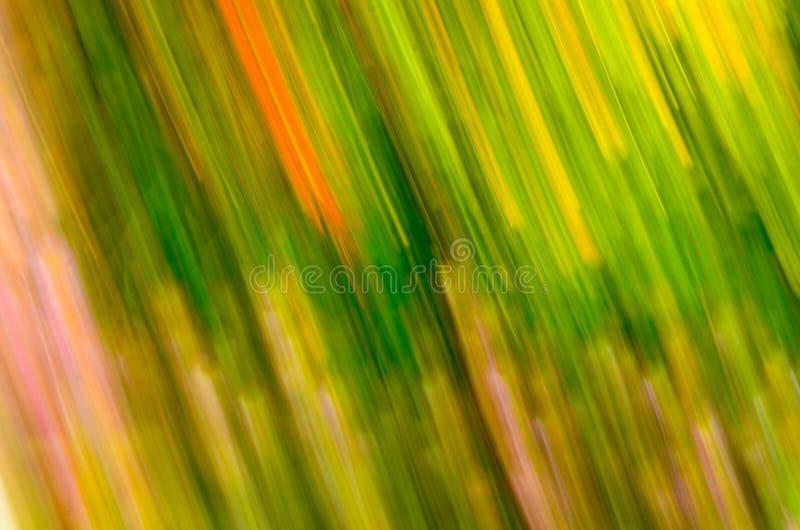 Abstracte geweven fractals stock foto