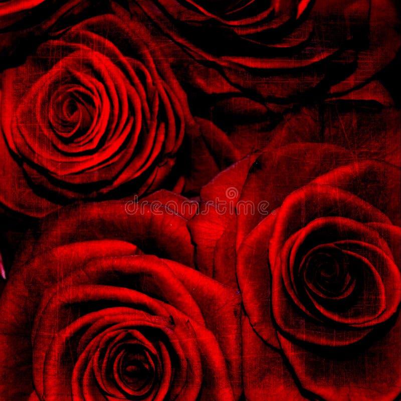 Abstracte grunge geweven achtergrond met rozen vector illustratie