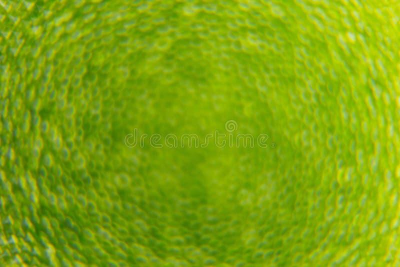 Abstracte heldergroene de lenteachtergrond met onduidelijk beeld en fonkelingen De achtergrond van de lente De zomerachtergrond stock illustratie
