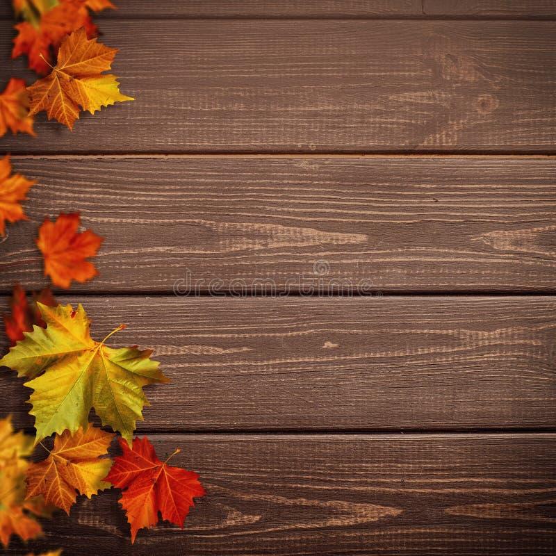 Abstracte herfstachtergronden De bladeren van de dalingsesdoorn royalty-vrije stock afbeeldingen
