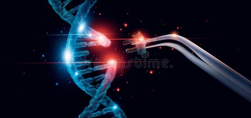 Abstracte lichtgevende DNA-molecule Het concept van de genetische en genmanipulatie stock illustratie