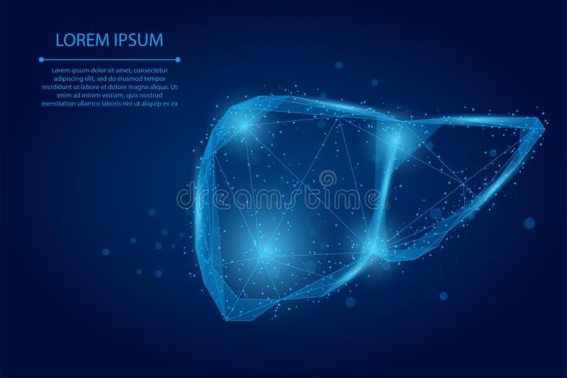 Abstracte lijn en punt menselijke lever Lage poly Healthcare stock illustratie