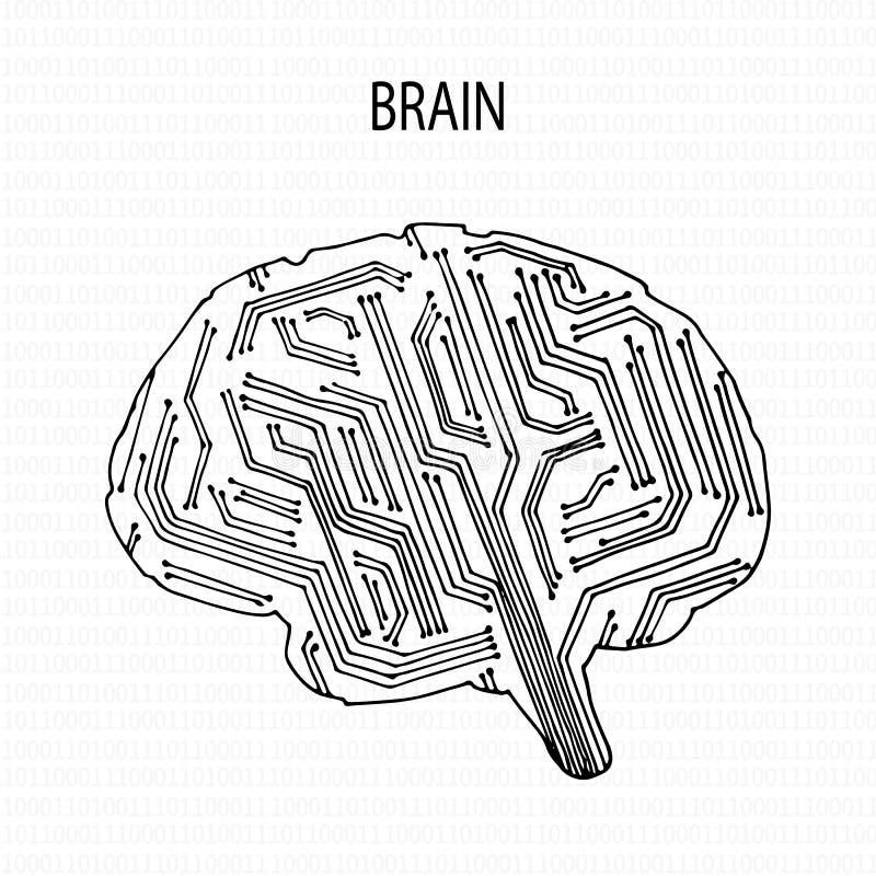 Abstracte Menselijke Hersenen royalty-vrije illustratie