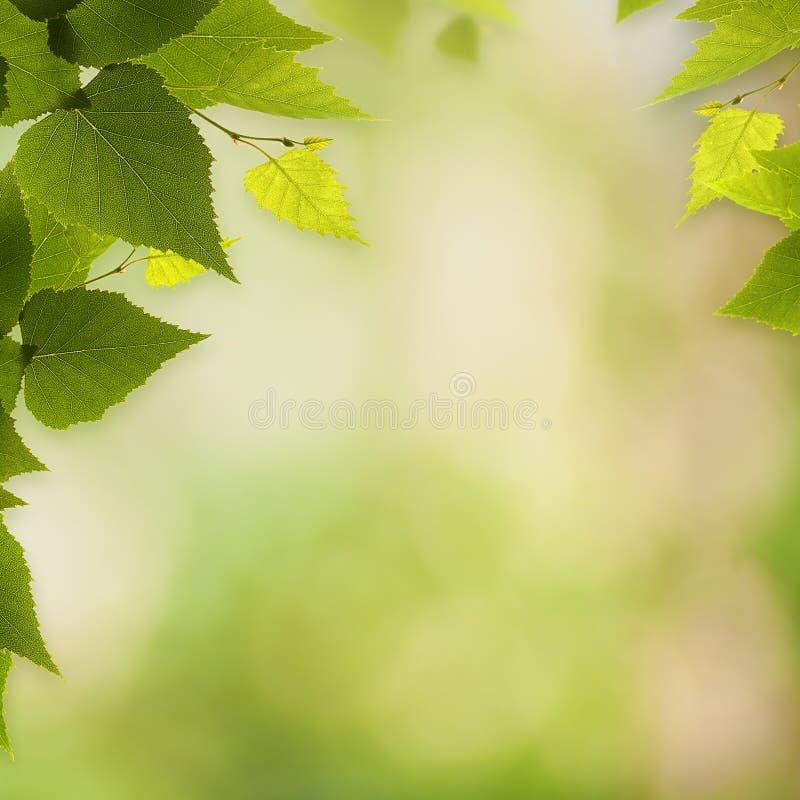 Abstracte milieuachtergronden stock foto's