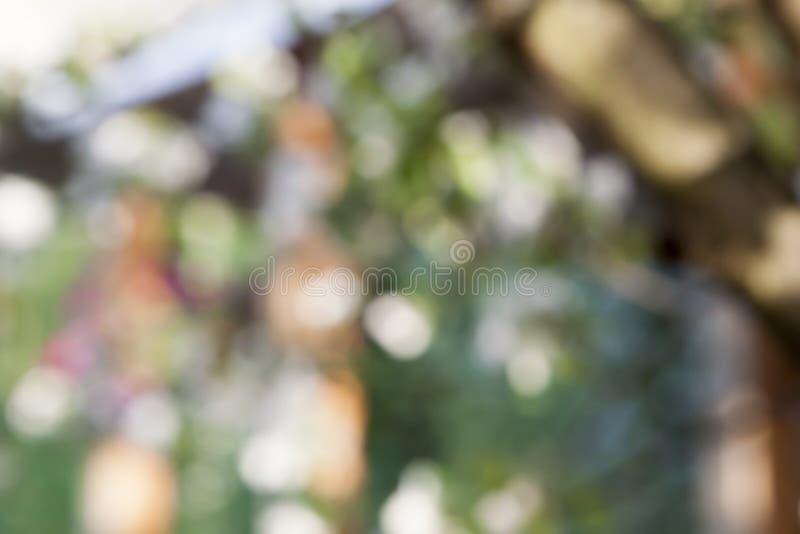 Abstracte mooie natuurlijke achtergrond royalty-vrije stock afbeeldingen