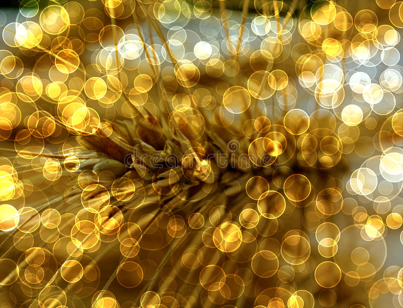 Abstracte multicolored achtergrond met onduidelijk beeld bokeh royalty-vrije illustratie