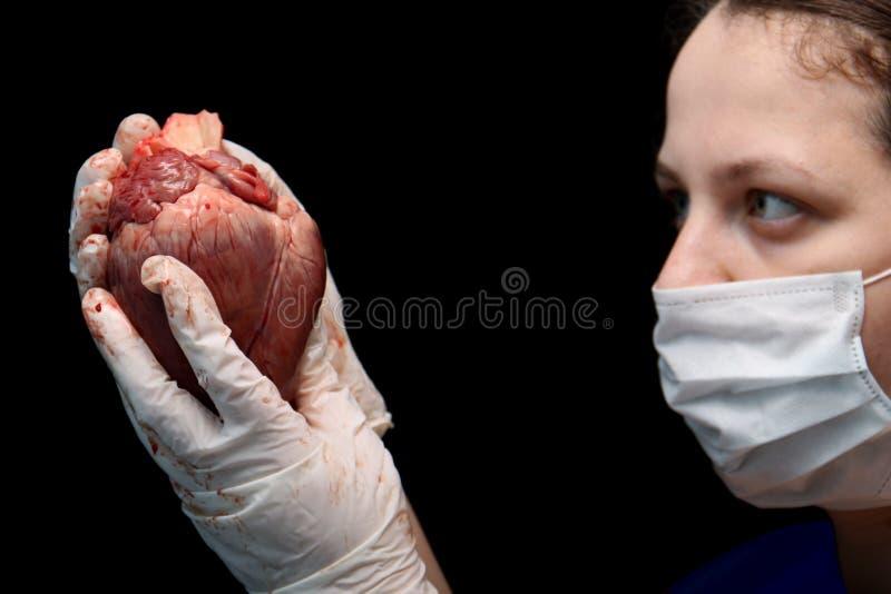 Abstracte onwettige orgaanoverplanting Een menselijk hart in de hand van een chirurgenvrouw Internationale Misdaad Moordenaars in royalty-vrije stock foto
