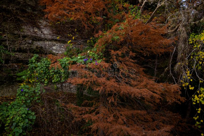Abstracte Openluchtscène in Daling royalty-vrije stock fotografie