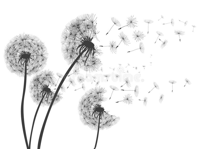 Abstracte Paardebloemenpaardebloem met vliegende zaden royalty-vrije illustratie