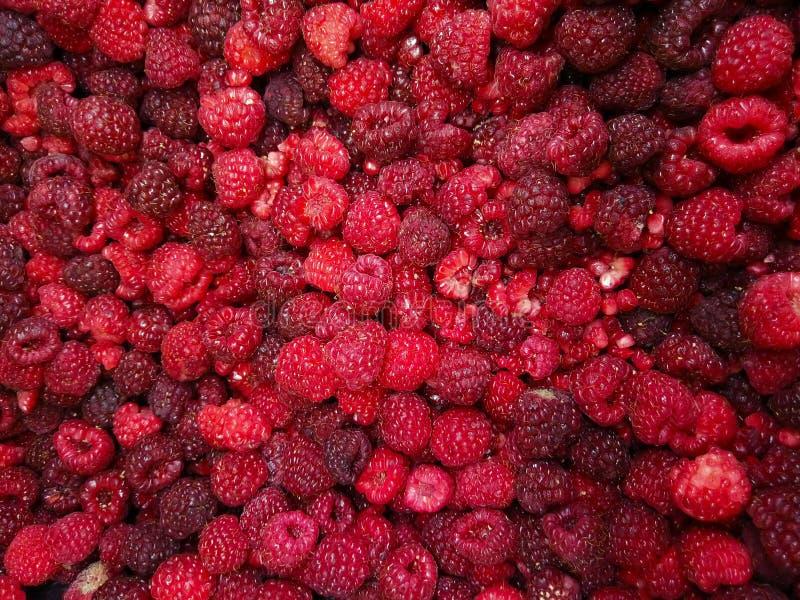 Abstracte rode achtergrond De Achtergrond van de framboos Heerlijk en gezond voedsel stock foto's