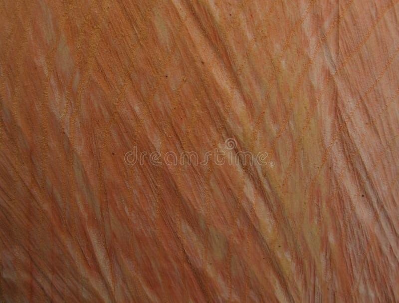 Abstracte textuur als achtergrond van hout royalty-vrije stock foto's