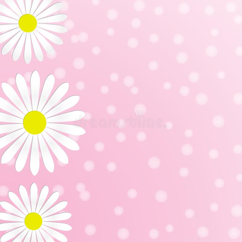 Abstracte Witte Daisy Flowers op Roze Achtergrond vector illustratie