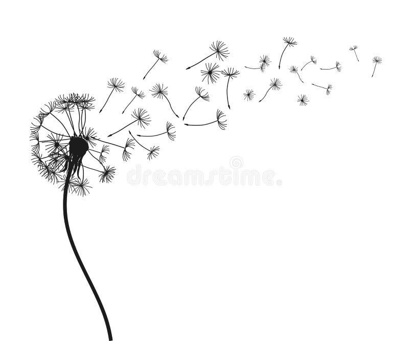 Abstracte zwarte paardebloem, vliegende zaden van paardebloem - voorraadvector vector illustratie