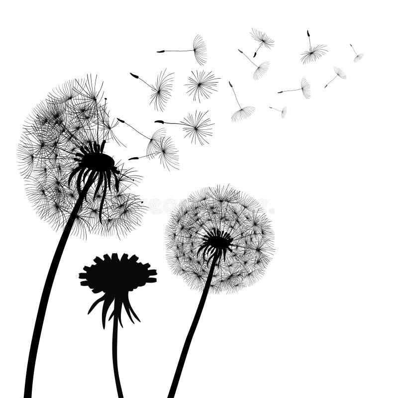 Abstracte zwarte Paardebloemen, paardebloem met het vliegen zaden_ vector vector illustratie