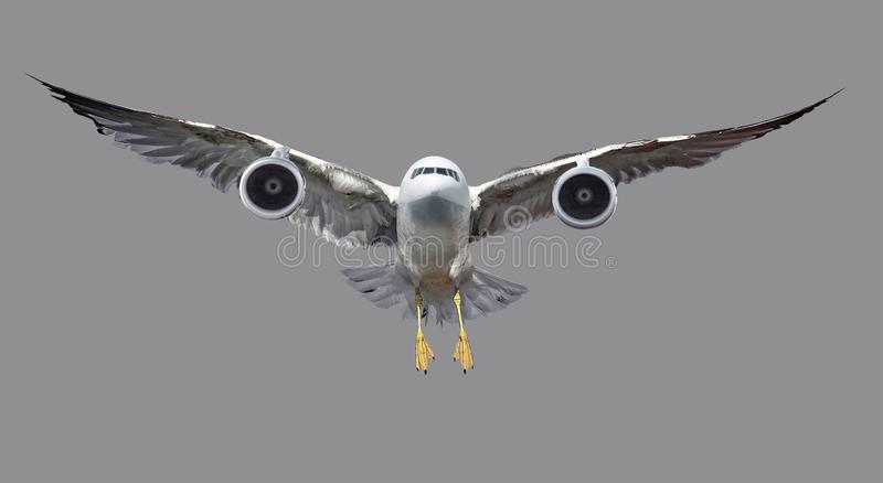 Abstraction on birds and airplanes stock photos