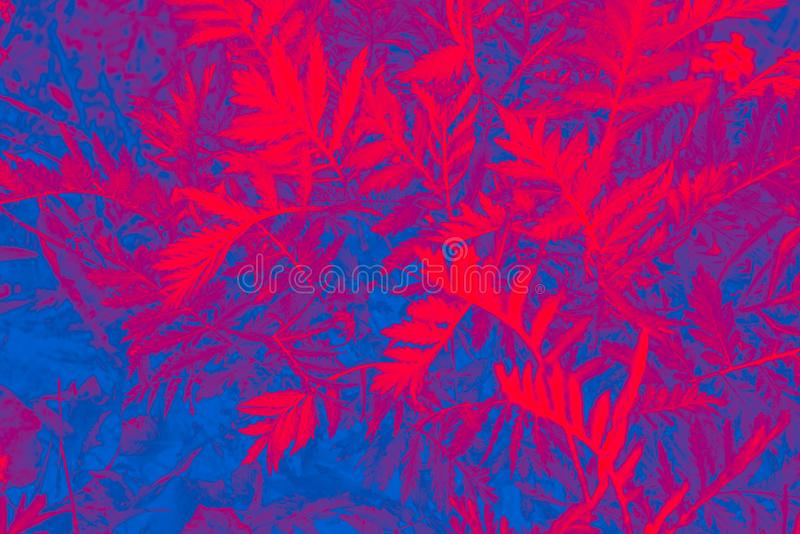 Cheerful, colorful background of plants. royalty free stock image
