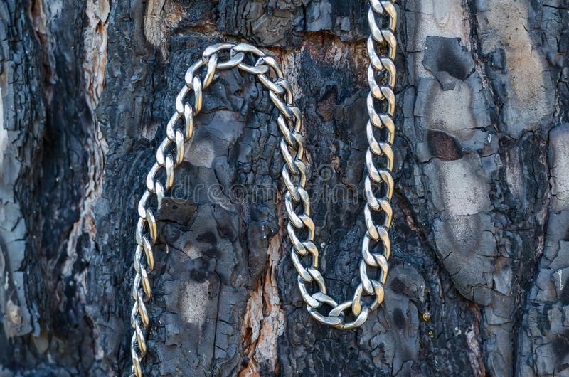 A metal chain of stainless steel lies on a burnt tree trunk. Shooting at eye level. Macro. Abstraction and contrast among us. Soft wood and hard metal. Light stock photo