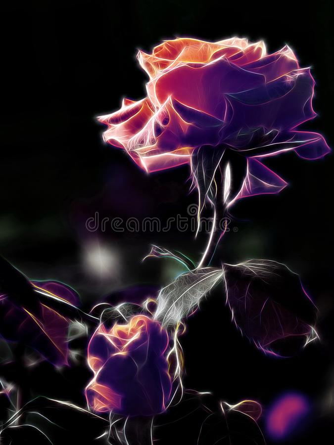 Abstraction flower rose neon large blurred background glowing neon light living flower lonely symbol of the beauty of love royalty free stock image