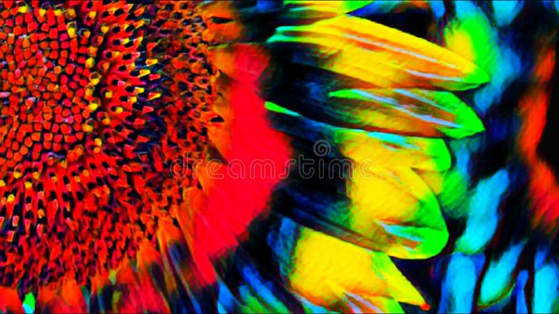 Abstraction, flower of a sunflower in colorful colors royalty free illustration