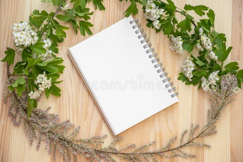 Abstraia a foto imóvel da vida do bloco de notas e das plantas imagens de stock royalty free
