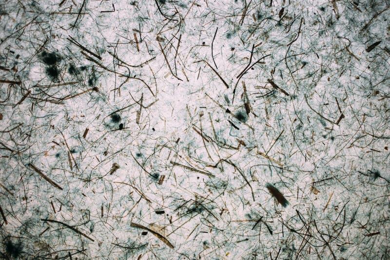 Abstrakcjonistyczna bława tekstura i tło Popielata tekstura robić z przetwarzającym papierem obrazy royalty free