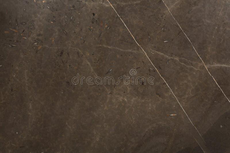 Abstrakcjonistyczna ciemnego brązu marmuru tekstura na makro- Pi?kny naturalny kamienny t?o fotografia stock