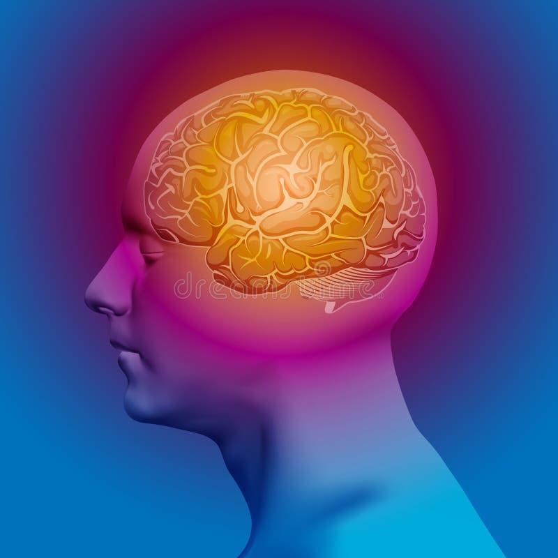 Abstrakcjonistyczna Ludzka głowa z mózg wektor royalty ilustracja