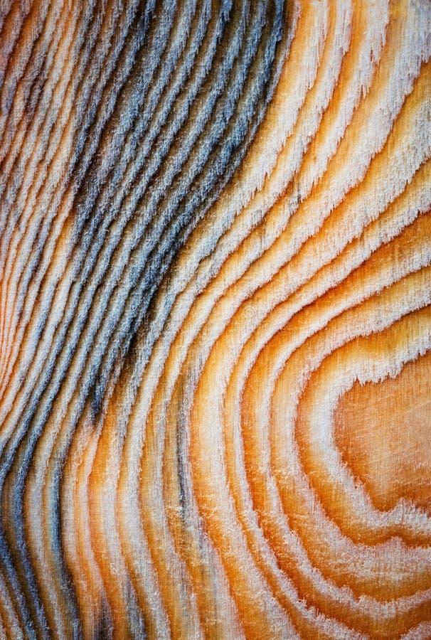 Abstrakcjonistyczna mapa na drewnianej desce fotografia royalty free