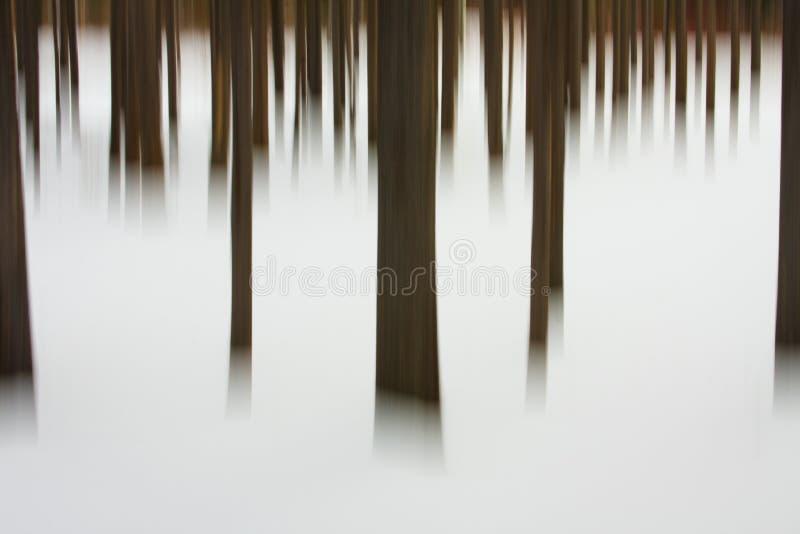 abstrakcjonistyczna Montana drzew zima zdjęcia stock