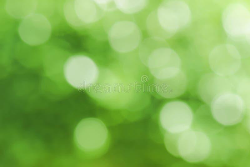 Abstrakcjonistyczna plama z bokhe światło przez drzew Trybowych fotografia royalty free