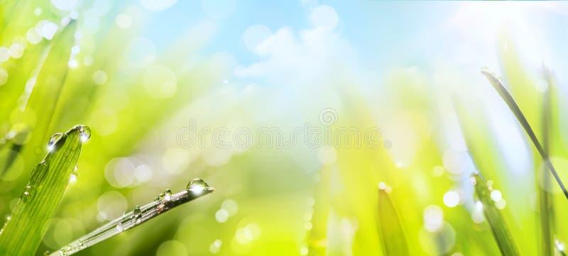 abstrakcjonistyczna tła natury wiosna obrazy royalty free