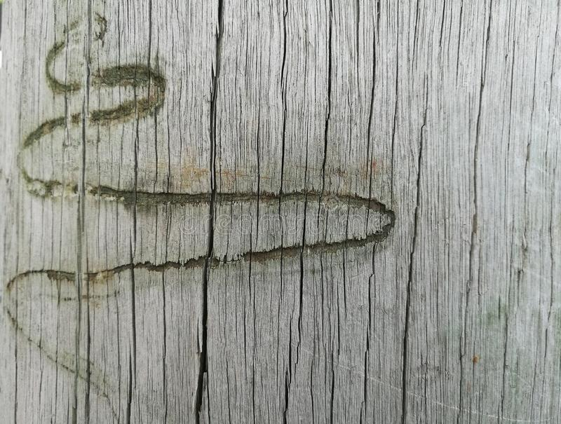 Abstrakcjonistyczna węża cewienia ocena na drewnianym tle zdjęcie stock