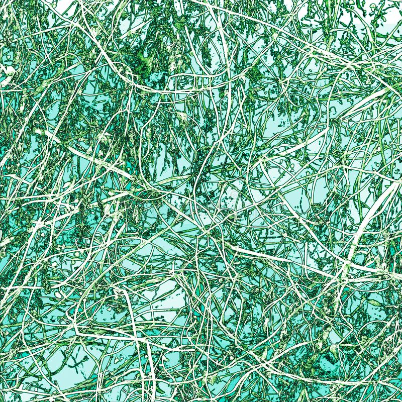 Abstrakcjonistyczna winograd gmatwanina na Zielonym tle obrazy royalty free