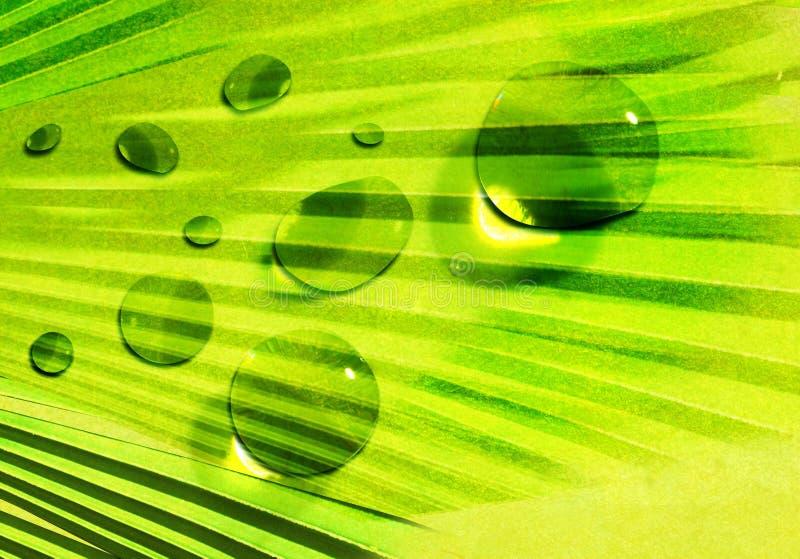 abstrakcjonistyczna zielona natura ilustracji