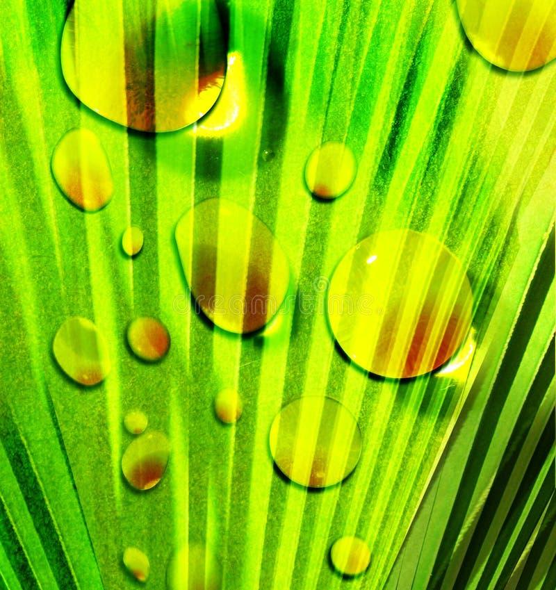 abstrakcjonistyczna zielona natura royalty ilustracja
