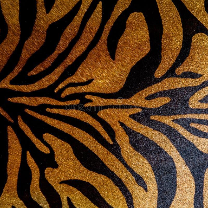 Abstrakcjonistycznego druku zwierzęcy bezszwowy wzór Zebra, tygrysów lampasy Pasiasta wielostrzałowa tło tekstura Tkanina projekt fotografia stock