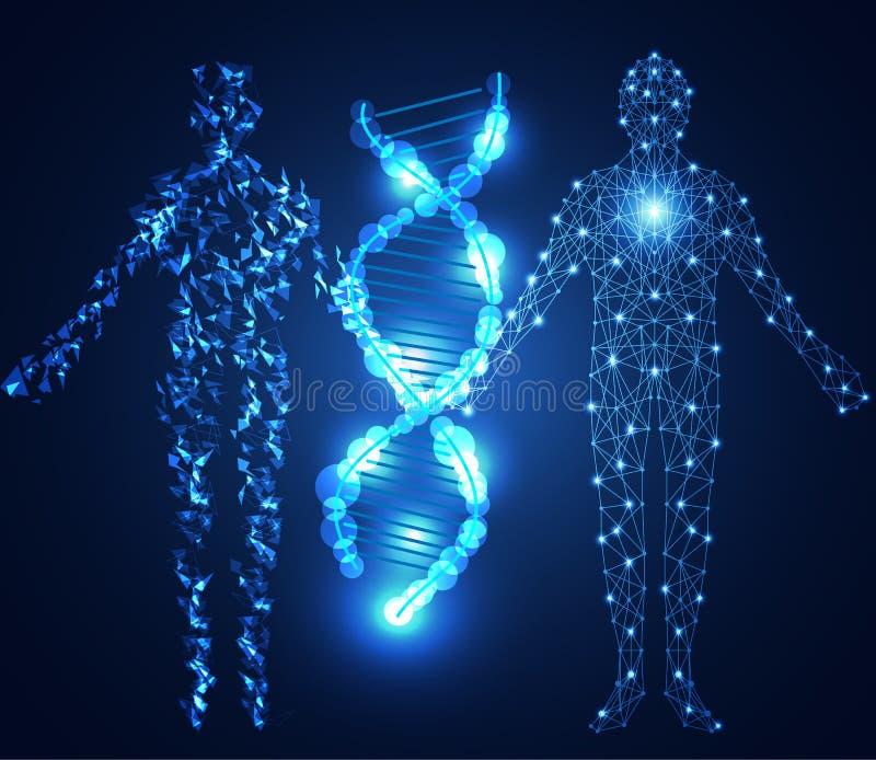 Abstrakcjonistycznego technologii nauki pojęcia ludzki cyfrowy połączenie o i DNA ilustracji