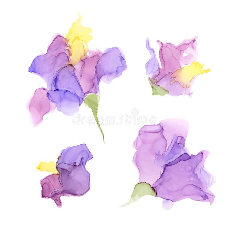 Abstrakcjonistyczni koloru alkoholu atramentu kwiaty odizolowywający na białym tle royalty ilustracja