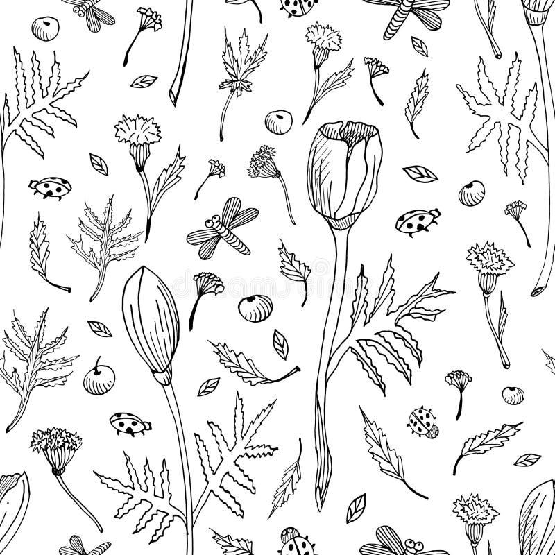 Abstrakcjonistyczny bezszwowy kwiecisty wzór z tulipanami, liśćmi i ziele, R?ka rysuj?cy czarny i bia?y kwiaty Konturu monochrom ilustracji