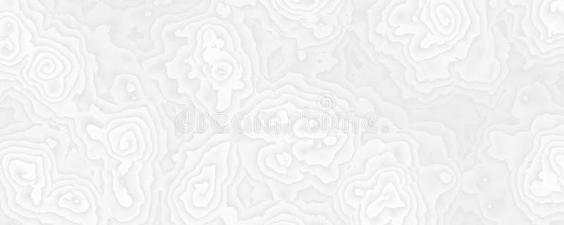 Abstrakcjonistyczny biel róży projekta tło royalty ilustracja