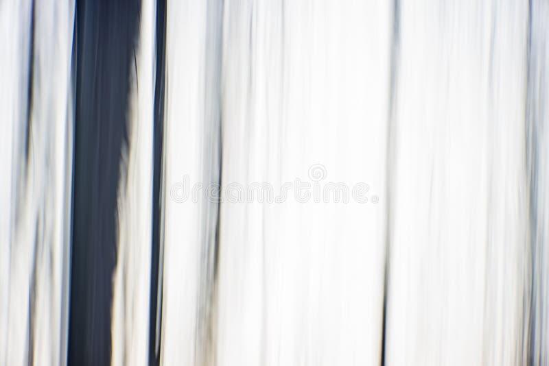 Abstrakcjonistyczny cyfrowy obraz gęsty i ciężki lesisty las przy obrazy stock