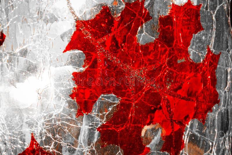 Abstrakcjonistyczny Dębowy liścia szczegół na szkle zdjęcia stock
