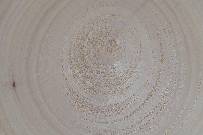 Abstrakcjonistyczny drewniany tekstury spirali tło obraz royalty free